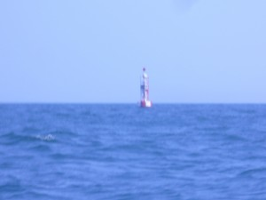 Racon Buoy Picture